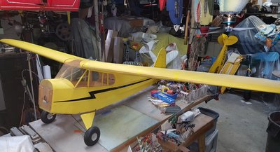 10-23-2018 Piper Cub-Balsa USA-Quarter Scale (6).jpg