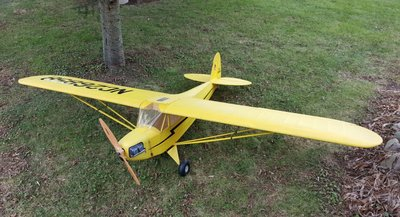 12-10-2018 Piper Cub - Finished (0).jpg